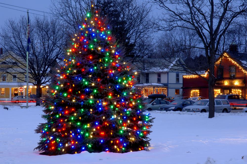 Holiday-Christmas 50-05-01803